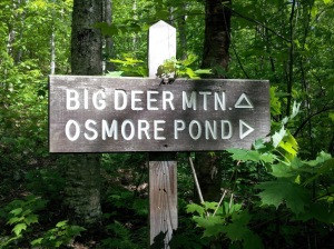 Big Deer Mountain, Groton State Forest